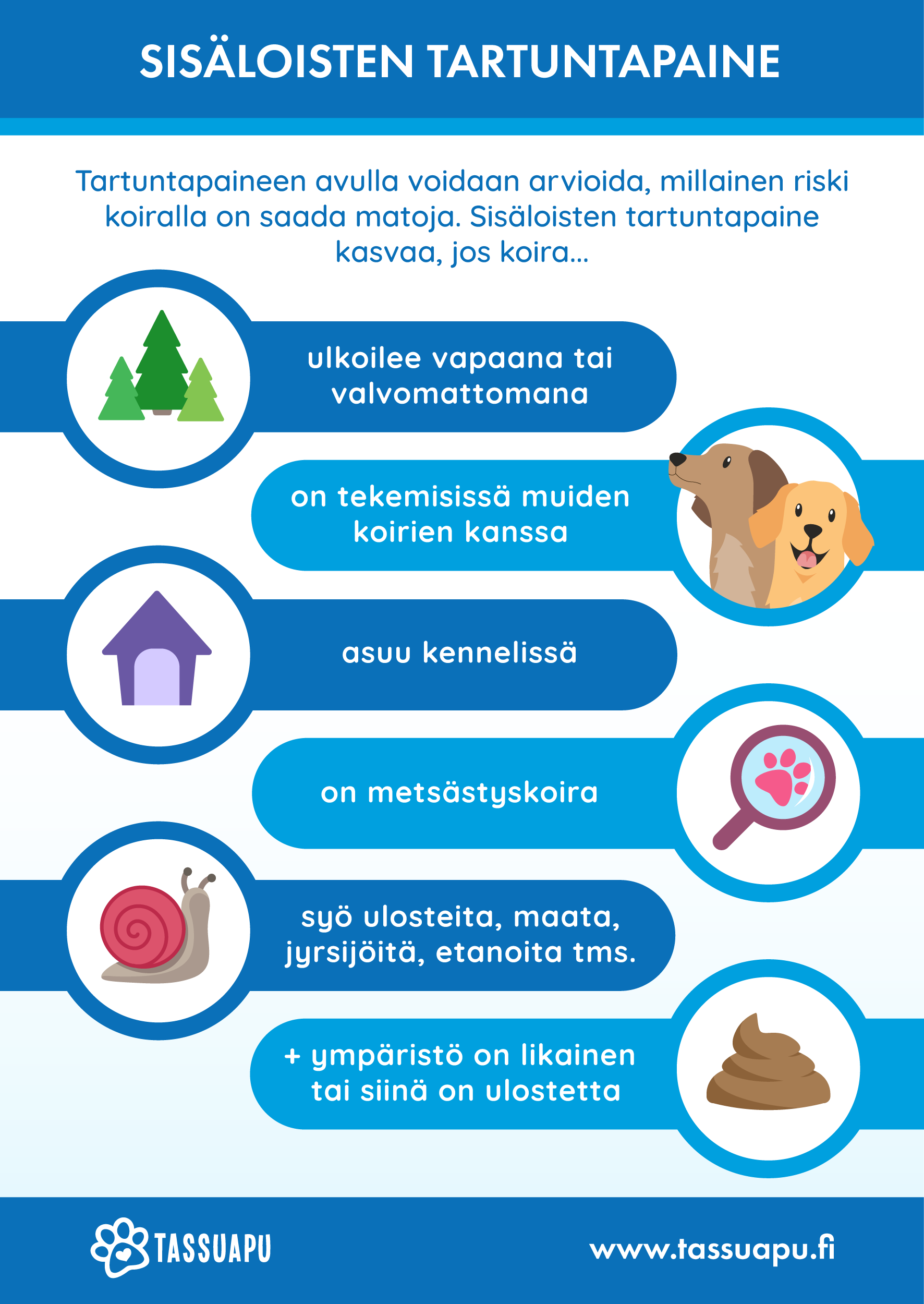 koiran matolääkitys sisäloisten tartuntapaine