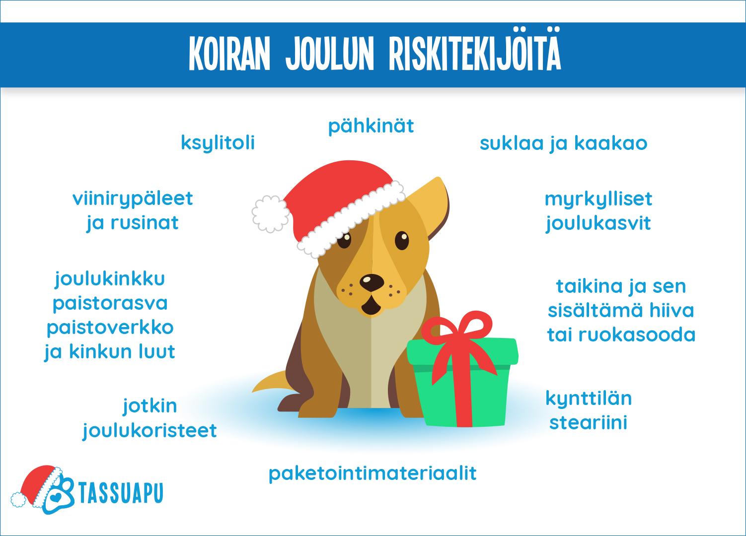 koiran joulun riskitekijöitä