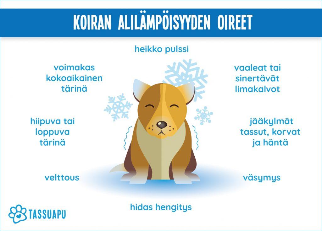 koiran alilampoisyys oireet