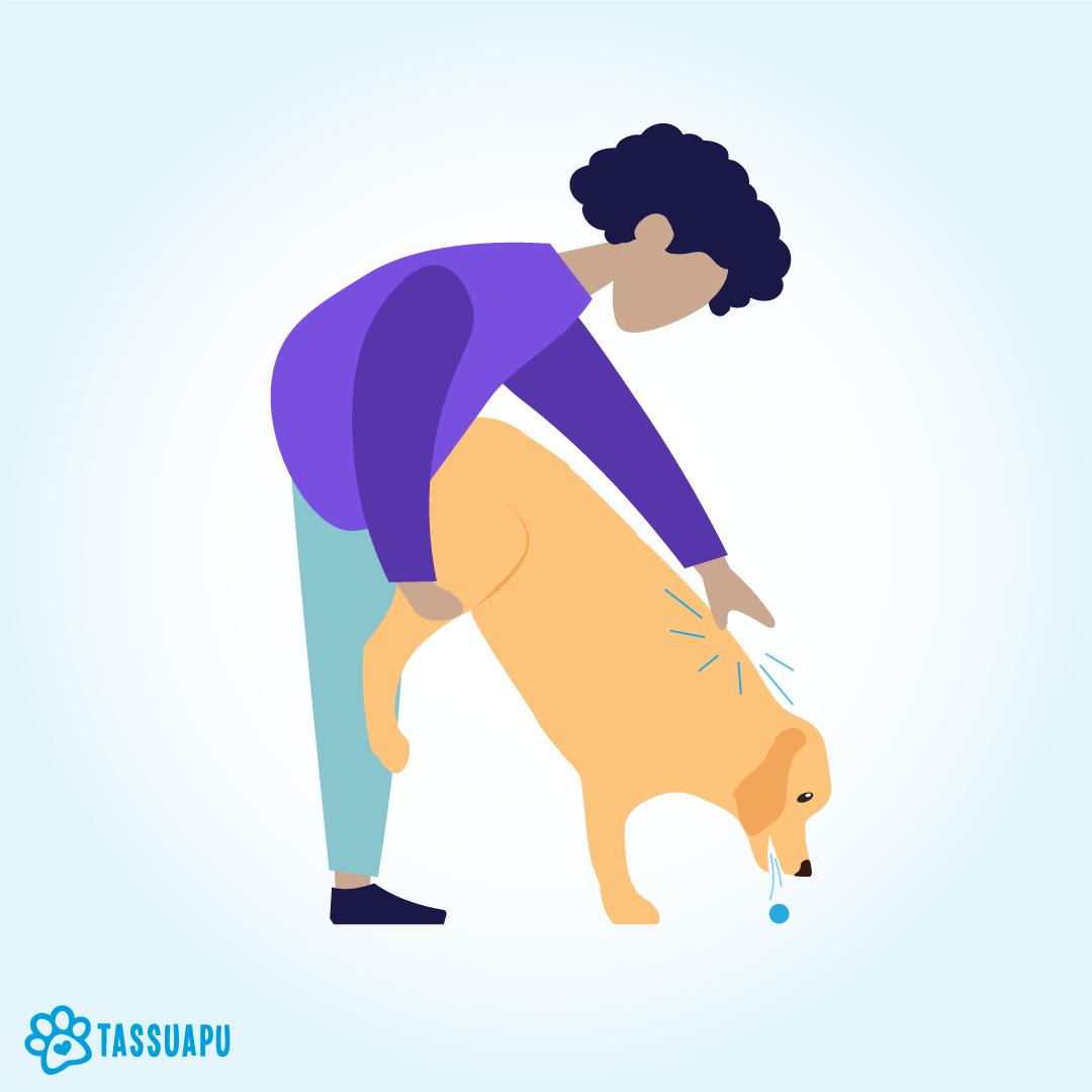 koira tukehtuu ensiapu
